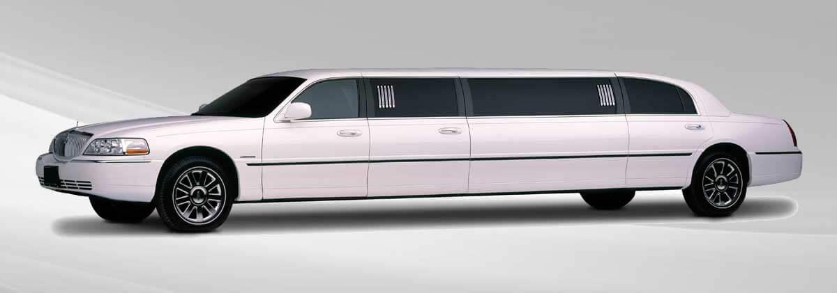 10 Passenger Limousine